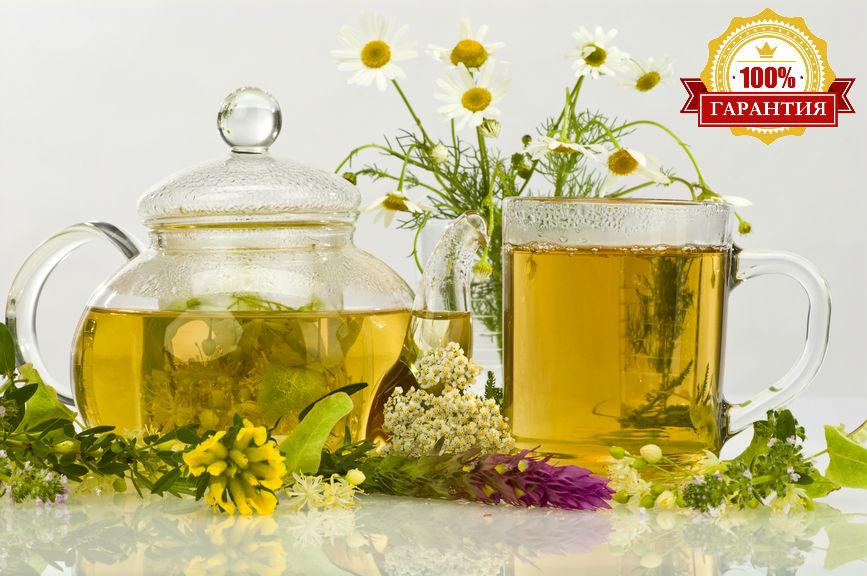 чай против паразитов в организме человека