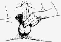 Титан гель инструкция по применению альтернативным способом