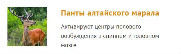 Алтайский марал панты